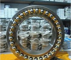 Axial Bearing 29348E Spherical Thrust Roller Bearing 29348E