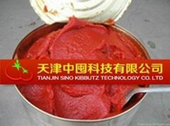 tomato paste in drum  manufacturer