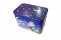 Giftable Tin Container 1