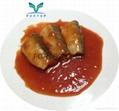 Canned sardine fish(in oil, brine, tomato sauce) 2