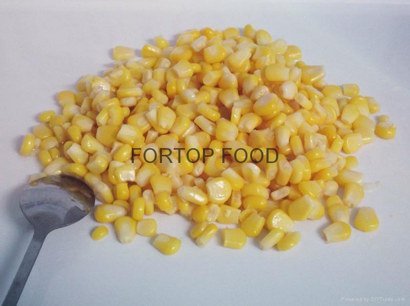 canned sweet corn 425g 2