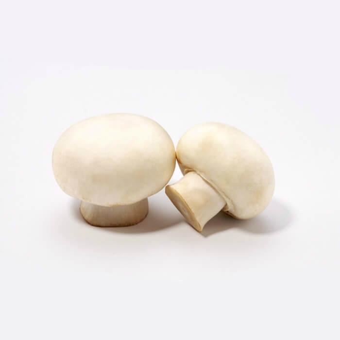 Freeze Dried Mushroom 3