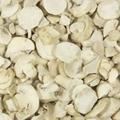 Freeze Dried Mushroom 2