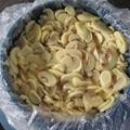 Brine Mushroom in Drum(Whole, Slice) 2
