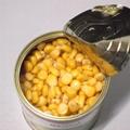 canned sweet corn 425g 5