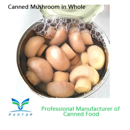 Canned Mushroom Champignons Mushroom Whole in brine 1