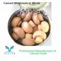 Canned Mushroom Champignons Mushroom