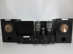 Vacuum Tube Bluetooth Amplifier with Wood Speakers set