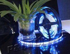 2014 high quality 5050 led strip with best price