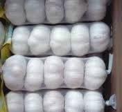 2014 new crop fresh white garlic export in Malaysia