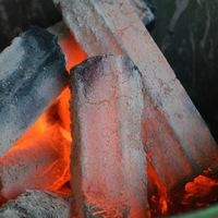 Sawdust charcoal to malaysia market