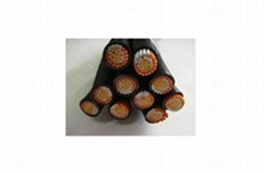 Cross-Linked Polyethylene Insulation Control Cable