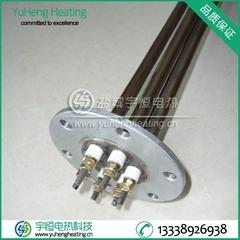 帶罩殼不鏽鋼3U帶螺牙法蘭電加熱管