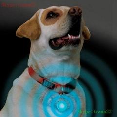 dog leash led wholesale pet dog collar