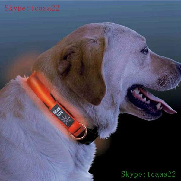 retractable dog pet leash with led light 3