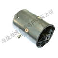 12 v and 24 v pump has a brush dc motor groove a word 1