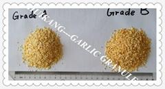 Garlic Granule
