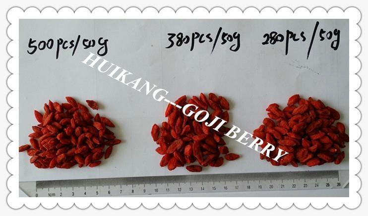 Goji berry 6