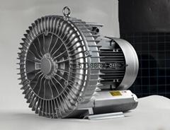 LD075H43R18高压力德系鼓风机/高压增氧机/吹吸输送风机