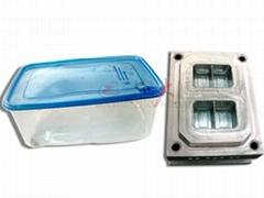 薄壁餐碗飯盒塑料模具