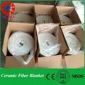 Ceramic wool insulation Blanket 2
