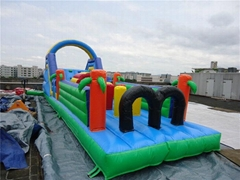 Inflatable Playground Gi