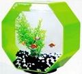 acrylic fish tank 2
