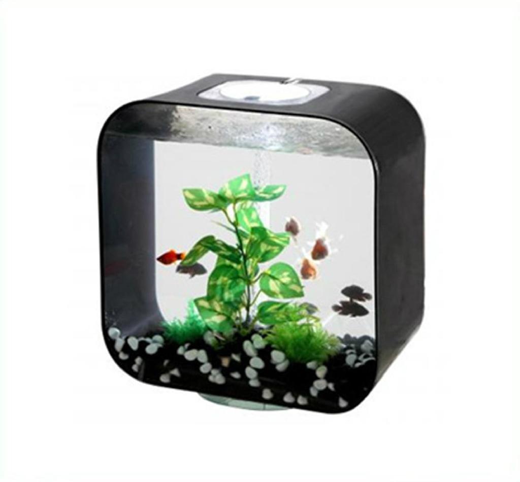 acrylic fish tank 3
