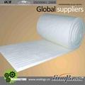 Alumina Silicate Ceramic Fiber Blanket 1
