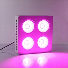 Hydroponic Plant Growing Full spectrum 4x100W COB vanq led grow light