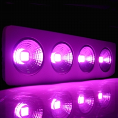 Hydroponic Application Full spectrum 4x100W COB custom led grow light