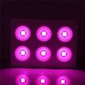 Full spectrum 440nm-730nm 6x200W COB led