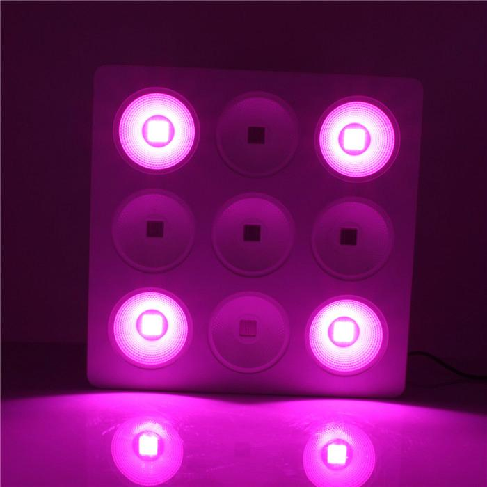 9pcs COB with Reflector 800w led grow light used for hydroponic 6
