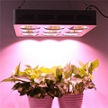 Full Spectrum 9x200W COB led grow light kit good for medical plant 4