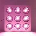 Full Spectrum 9x200W COB led grow light kit good for medical plant 7