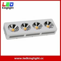 Full Spectrum 4x200W COB led grow light