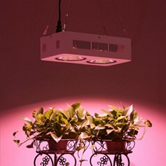 Full Spectrum 2x200W COB 180w hans panel led grow light good for medical plant,