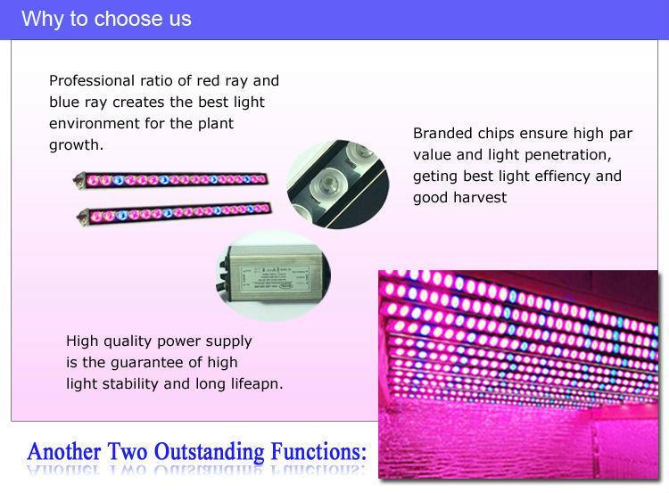 High brightness IP65 waterproof led grow light bar for all indoor plants 6
