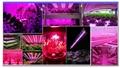 High brightness IP65 waterproof led grow light bar for all indoor plants 8