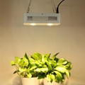 Full Spectrum KREE Chip COB 300w led