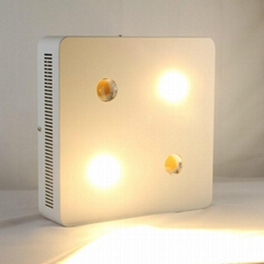 Energy saving new design CREE chip with lens LED grow light cob for hydroponic