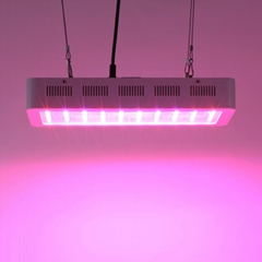 Super brightness Full Spectrum COB Iron Box 400w led grow light for Hydroponic