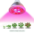 12x1W grow lights for indoor plants