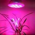 12x1W hydroponic grow system