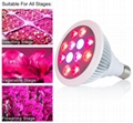 12x1W grow light bulbs