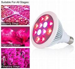 12x1W grow light bulbs