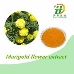 Marigold Flower Extract
