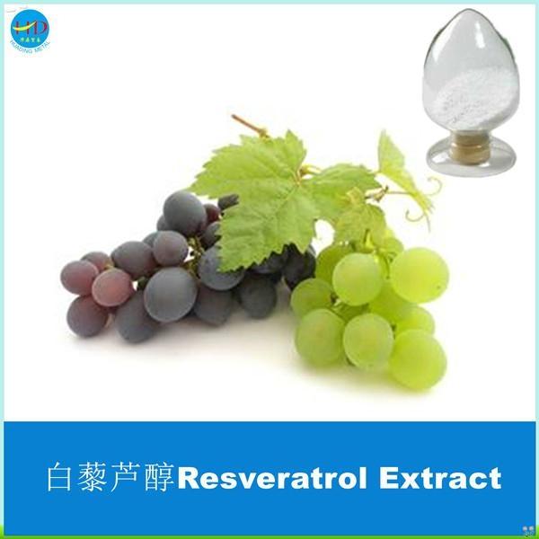 Hot Sale Polygonum Cuspidatum Resveratrol Extract 2