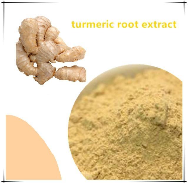 Best Quality Turmeric Curcumin Extract 2
