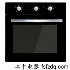Embedded Oven  040